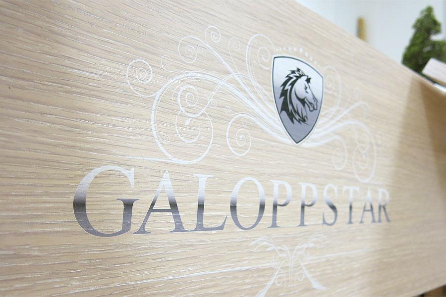 Galoppstar_studio_Hartensteiner_01
