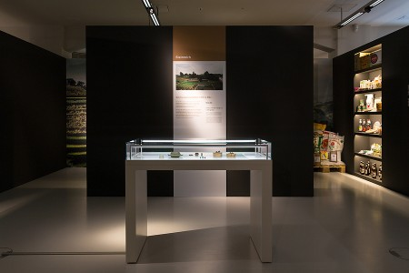 SMAC Chemnitz, Ausstellung, Museum, Vietnam, Ausstellungsgestaltung, Studio Hartensteiner